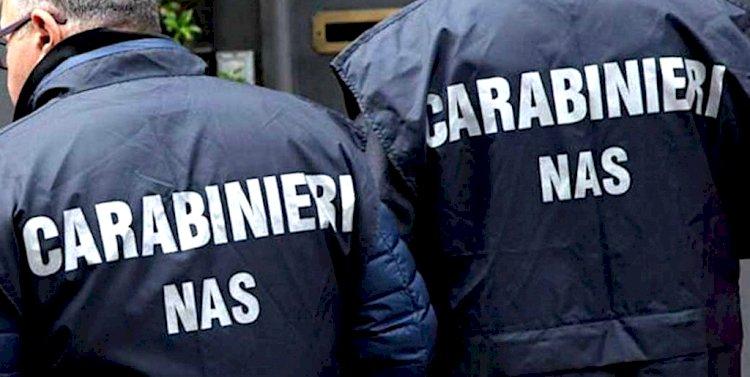 N.A.S. Cagliari: traffico illecito sostanze anabolizzanti.