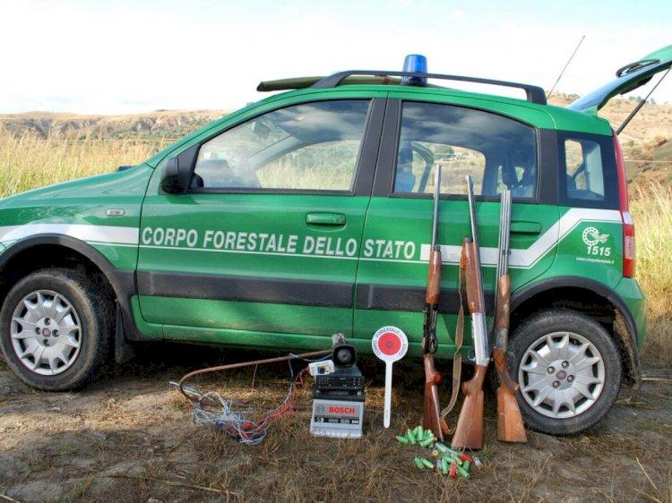 Roma, auto elettriche ai Forestali