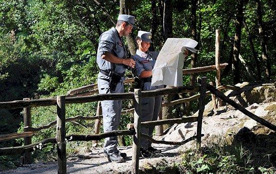 Carabinieri, tecnologie digitali per la tutela dell'ambiente e foreste