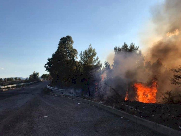 Comune di Cropalati, fiamme sulla strada