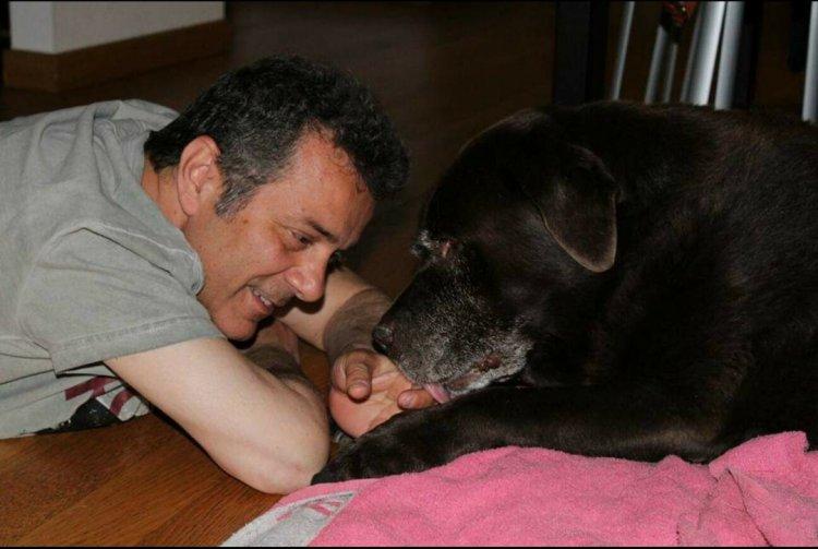 Busto, polemica pure sui cani