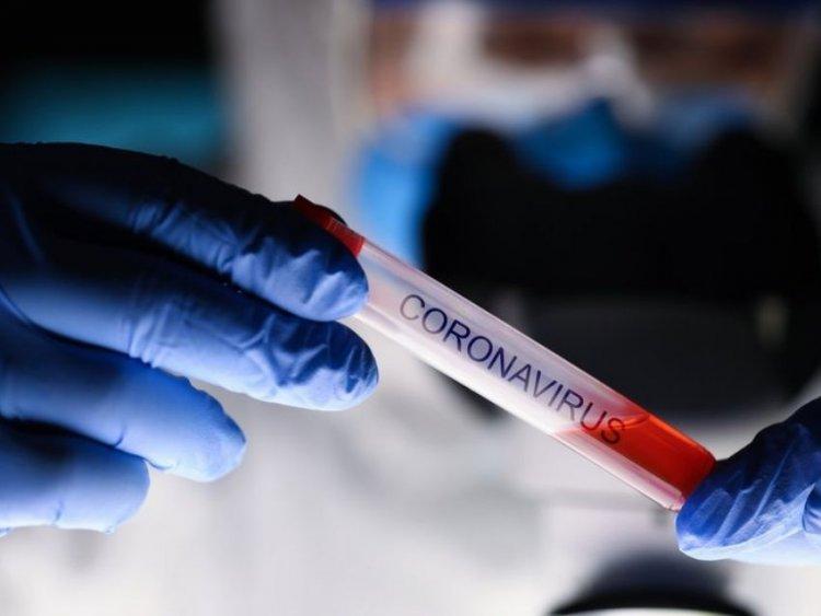 Coronavirus. La pandemia sta minando Leadership e Governance dell'OMS