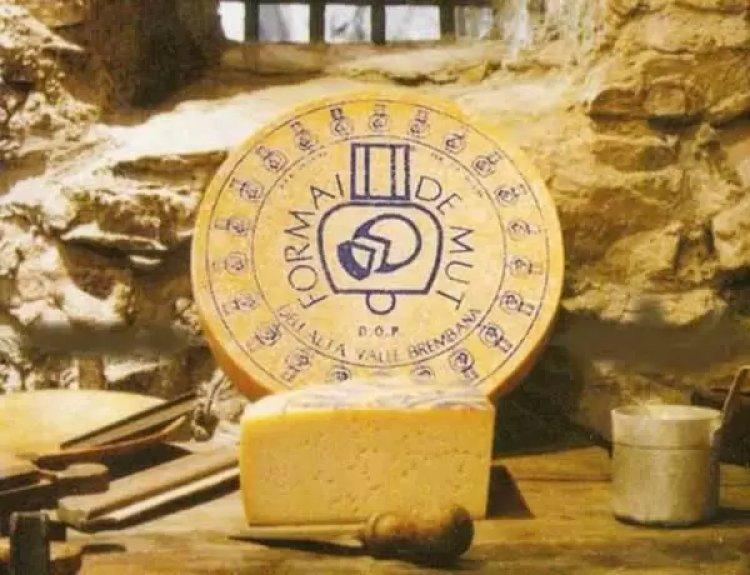 Presenza di Listeria, Ministero della salute annuncia richiamo di formaggio