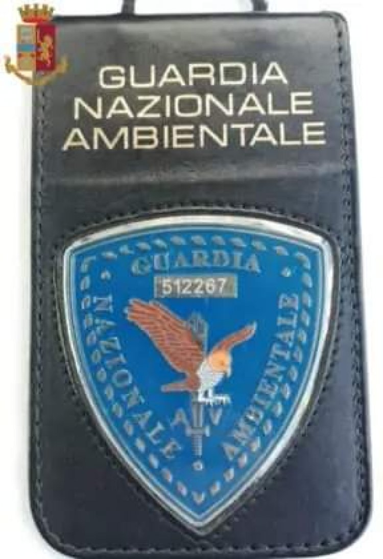 Attacco alle Guardie Giurate intervista ad Ennio Pietrangeli.