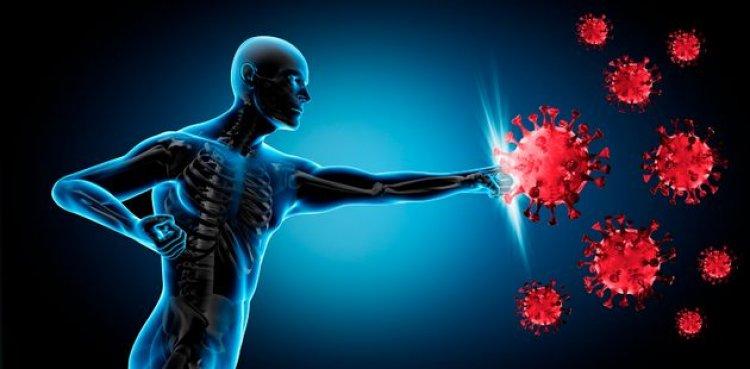 Vaccino: una semplice pillola sconfiggerà il Covid