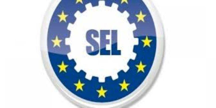 Fallimento Centralpol Sevitalia Sicurezza, vittoria del Sindacato Europeo L.