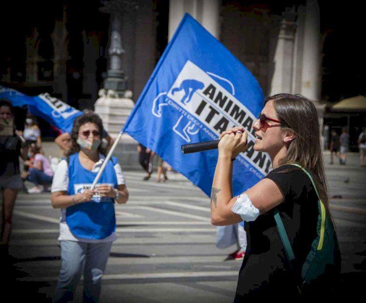 Humanitas di Catania smentiti i licenziamenti
